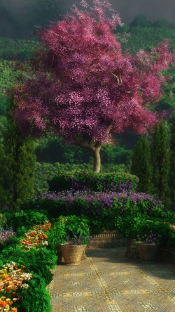 landscape gardens flowers trees