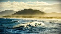 Joaquina Beach Surfer