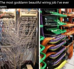 The most goddamn beautiful wiring job I've ever seen