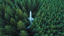falling plane jungle
