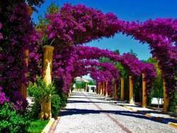 çiçekli kapı girişler (1)